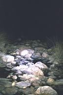 Action Light illuminated scene